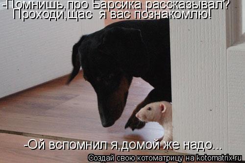 Котоматрица: -Помнишь,про Барсика рассказывал? Проходи,щас  я вас познакомлю! -Ой вспомнил я,домой же надо...