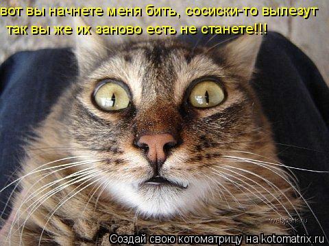 Котоматрица: вот вы начнете меня бить, сосиски-то вылезут так вы же их заново есть не станете!!!
