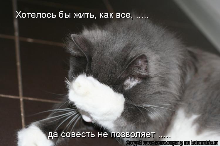 Котоматрица: Хотелось бы жить, как все, ..... да совесть не позволяет .....