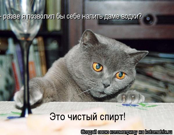 Котоматрица: - разве я позволил бы себе налить даме водки?  Это чистый спирт!