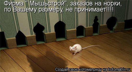 """Котоматрица: Фирма """" Мышьстрой"""", заказов на норки, по Вашему размеру, не принимает!!!!"""