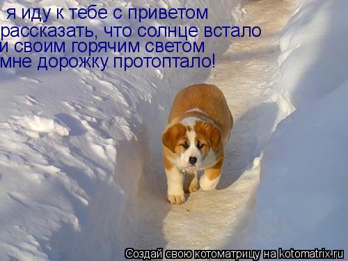 http://kotomatrix.ru/images/lolz/2008/12/06/U.jpg