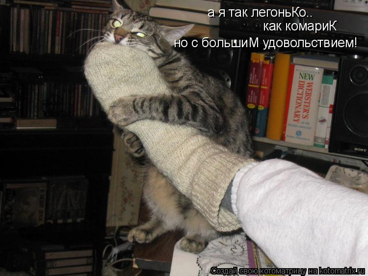Котоматрица: а я так легоньКо.. как комариК но с большиМ удовольствием!