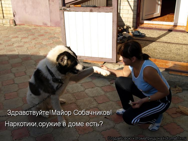 Котоматрица: Здравствуйте!Майор Собачников! Наркотики,оружие в доме есть?