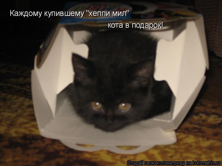 """Котоматрица: Каждому купившему """"хеппи мил""""  кота в подарок!"""