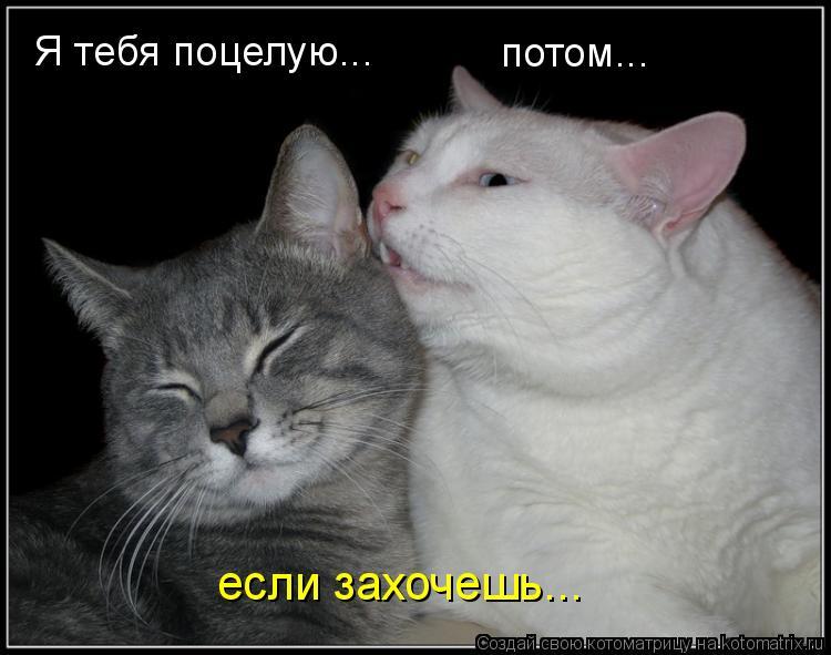golie-znamenitosti-habarovska