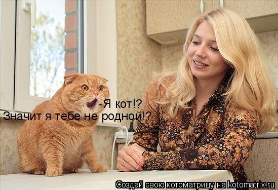 Котоматрица: -Я кот!?  Значит я тебе не родной!?