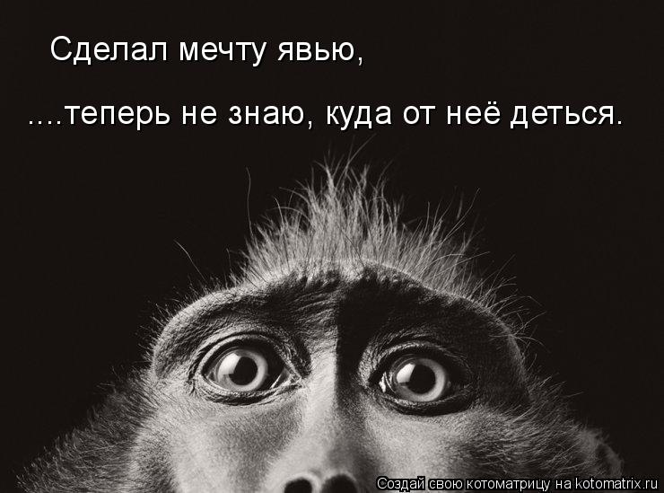 http://kotomatrix.ru/images/lolz/2008/12/09/dM.jpg