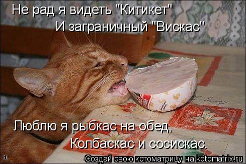 """Котоматрица: Не рад я видеть """"Китикет"""" И заграничный """"Вискас"""" Люблю я рыбкас на обед, Колбаскас и сосискас."""
