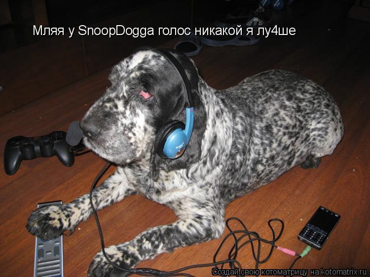 Котоматрица: Мляя у SnoopDogga голос никакой я лу4ше