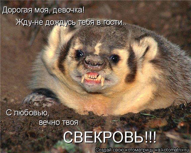http://kotomatrix.ru/images/lolz/2008/12/11/6c.jpg