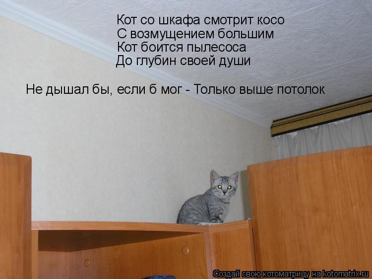Котоматрица: Кот со шкафа смотрит косо С возмущением большим Кот боится пылесоса До глубин своей души Не дышал бы, если б мог - Только выше потолок