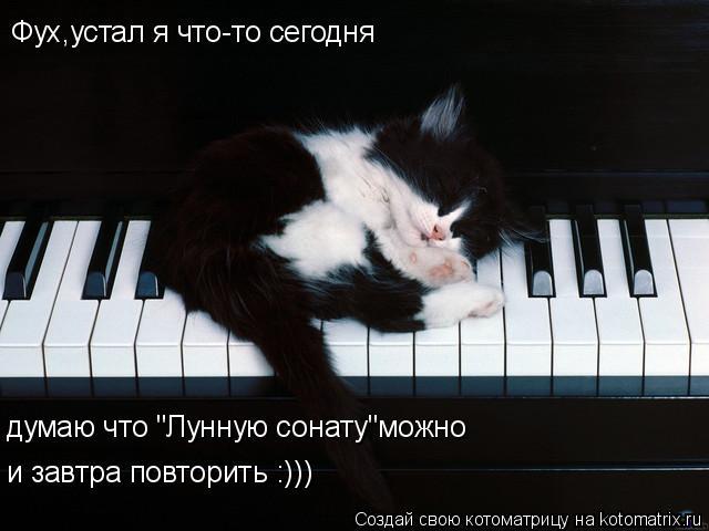"""Котоматрица: Фух,устал я что-то сегодня думаю что """"Лунную сонату""""можно и завтра повторить :)))"""