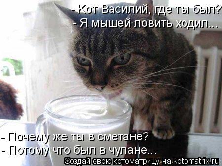 Котоматрица: - Kот Василий, где ты был? - Я мышей ловить ходил... - Почему же ты в сметане? - Потому что был в чулане...