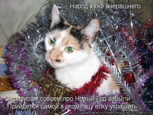 Котоматрица: Народ хуже вчерашнего... Прийдется самой в этом году елку украшать... С кризисом совсем про Новый Год забыли