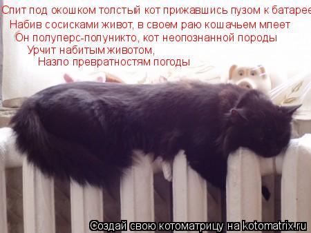 Котоматрица: Спит под окошком толстый кот прижавшись пузом к батарее Набив сосисками живот, в своем раю кошачьем млеет Он полуперс-полуникто, кот неопоз