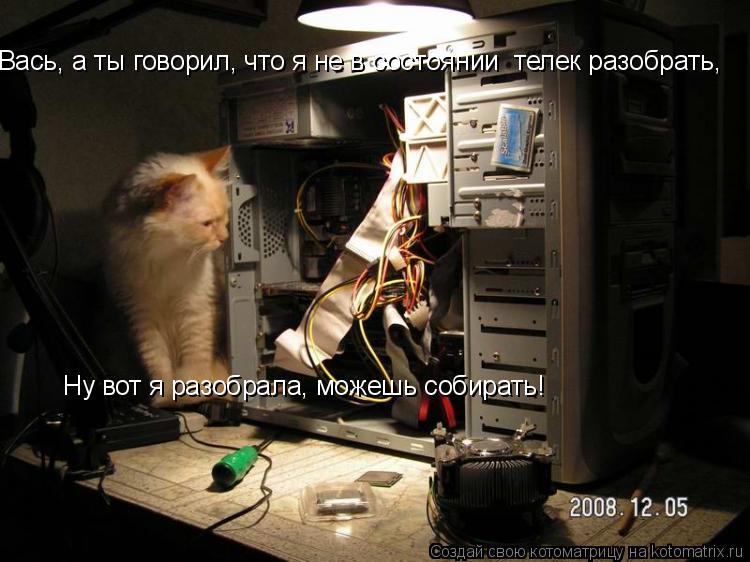 Котоматрица: Вась, а ты говорил, что я не в состоянии  телек разобрать, Ну вот я разобрала, можешь собирать!