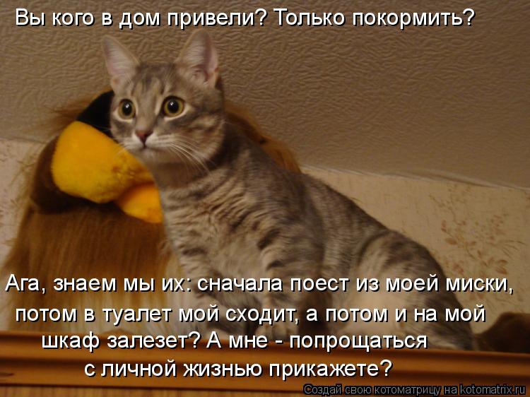 Котоматрица: Вы кого в дом привели? Только покормить? Ага, знаем мы их: сначала поест из моей миски, потом в туалет мой сходит, а потом и на мой шкаф залезет
