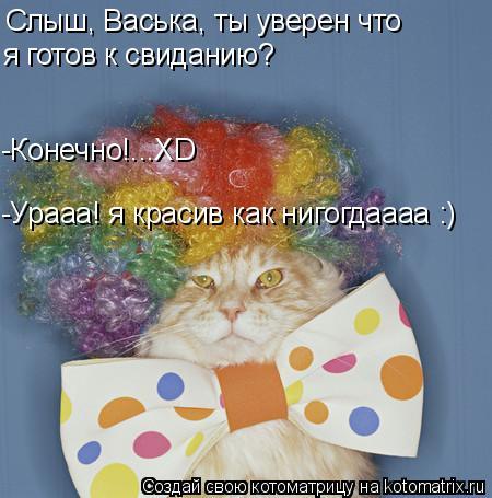 Котоматрица: Слыш, Васька, ты уверен что я готов к свиданию? -Конечно!...XD -Урааа! я красив как нигогдаааа :)