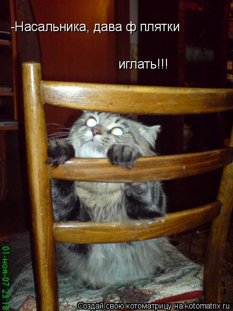 Котоматрица: -Насальника, дава ф плятки  иглать!!!