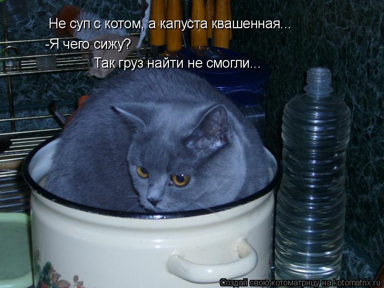 Котоматрица: Не суп с котом, а капуста квашенная... -Я чего сижу? Так груз найти не смогли...