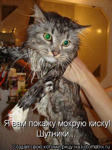 покажи мокрую киску