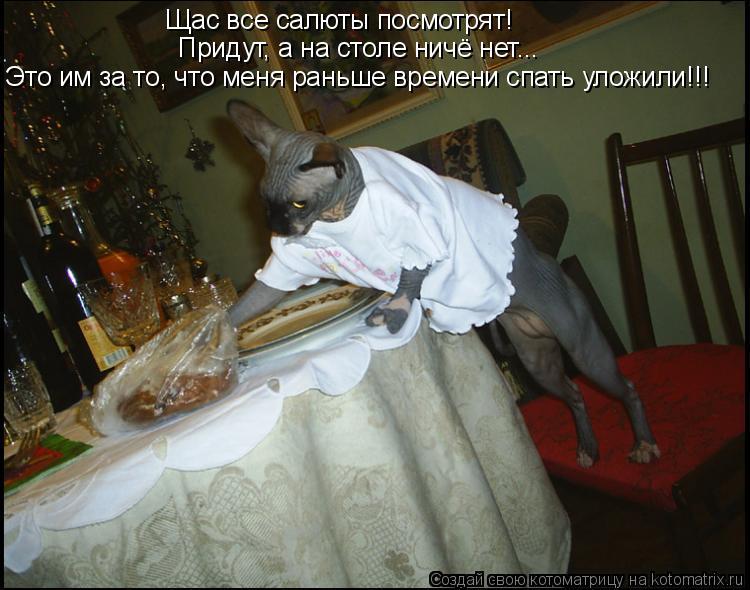 Котоматрица: Щас все салюты посмотрят! Придут, а на столе ничё нет... Это им за то, что меня раньше времени спать уложили!!!