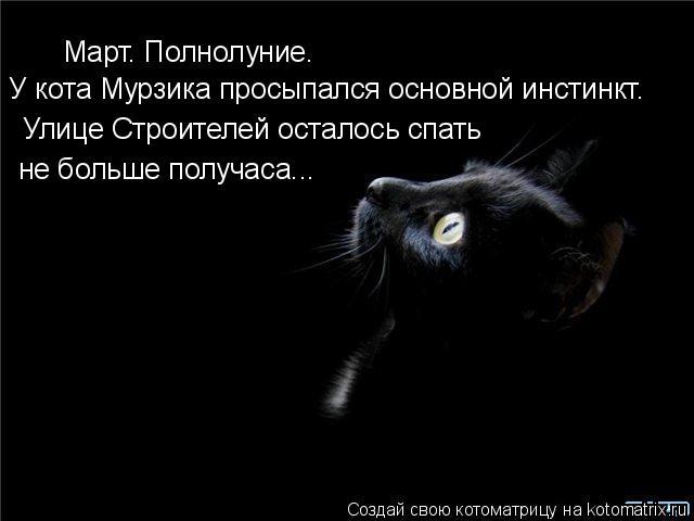 Котоматрица: Март. Полнолуние. У кота Мурзика просыпался основной инстинкт. Улице Строителей осталось спать не больше получаса...