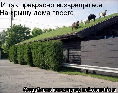 Котоматрица: И так прекрасно возврвщаться  На крышу дома твоего...