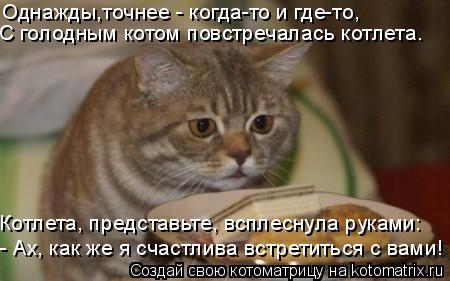 Котоматрица: Однажды,точнее - когда-то и где-то, С голодным котом повстречалась котлета. Котлета, представьте, всплеснула руками: - Ах, как же я счастлива в
