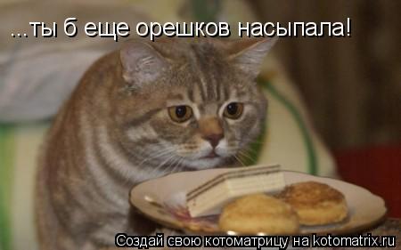 Котоматрица: ...ты б еще орешков насыпала!