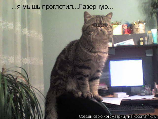 Котоматрица: ...я мышь проглотил...Лазерную...