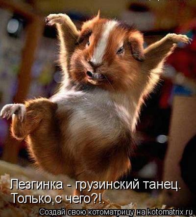 Котоматрица: Лезгинка - грузинский танец. Только,с чего?!.