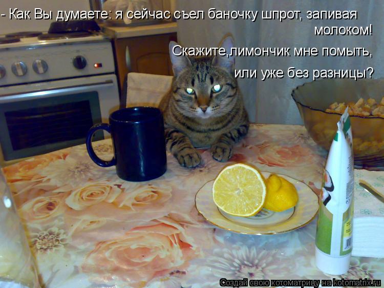 Котоматрица: - Как Вы думаете: я сейчас съел баночку шпрот, запивая молоком! или уже без разницы? Скажите,лимончик мне помыть,
