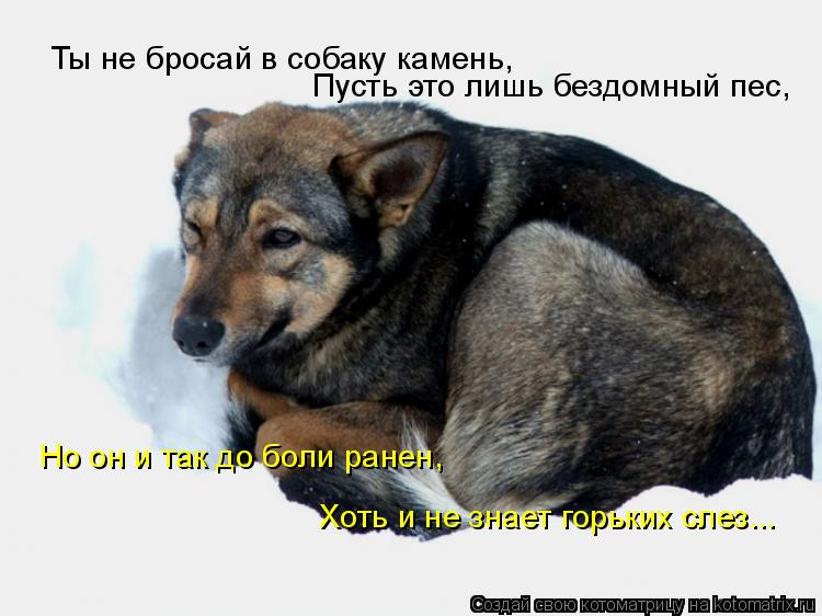 http://kotomatrix.ru/images/lolz/2008/12/17/QF.jpg