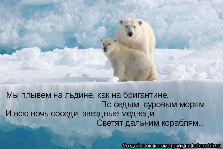 На отколовшейся льдине в Киеве оказались 30 рыбаков - Цензор.НЕТ 95