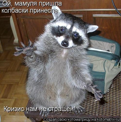 Котоматрица: Ой, мамуля пришла колбаски принесла. Кризис нам не страшен!