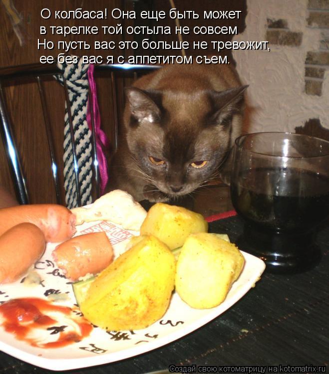 Котоматрица: О колбаса! Она еще быть может  в тарелке той остыла не совсем Но пусть вас это больше не тревожит,  ее без вас я с аппетитом съем.
