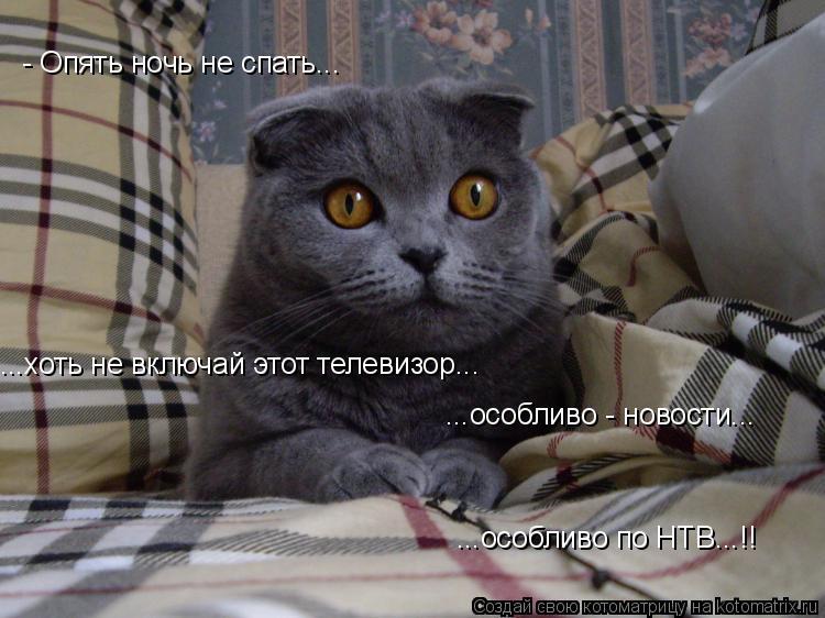 Котоматрица: - Опять ночь не спать... ...хоть не включай этот телевизор... ...особливо - новости... ...особливо по НТВ...!!