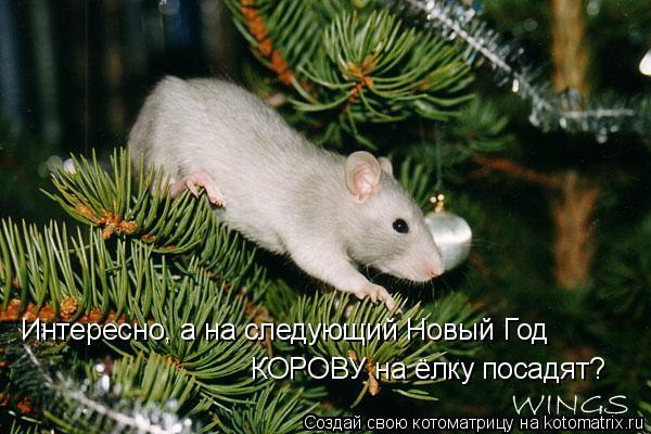 Котоматрица: Интересно, а на следующий Новый Год КОРОВУ на ёлку посадят?