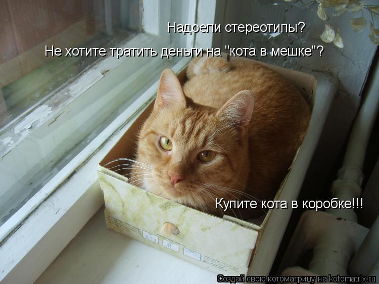 """Котоматрица: Надоели стереотипы? Не хотите тратить деньги на """"кота в мешке""""? Купите кота в коробке!!!"""