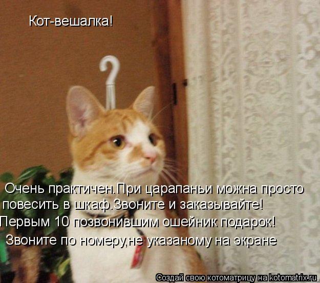 Котоматрица: Кот-вешалка! Очень практичен.При царапаньи можна просто повесить в шкаф.Звоните и заказывайте! Первым 10 позвонившим ошейник подарок! Звони
