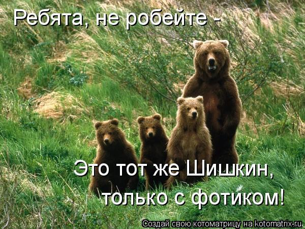 Котоматрица: Ребята, не робейте - Это тот же Шишкин, только с фотиком!