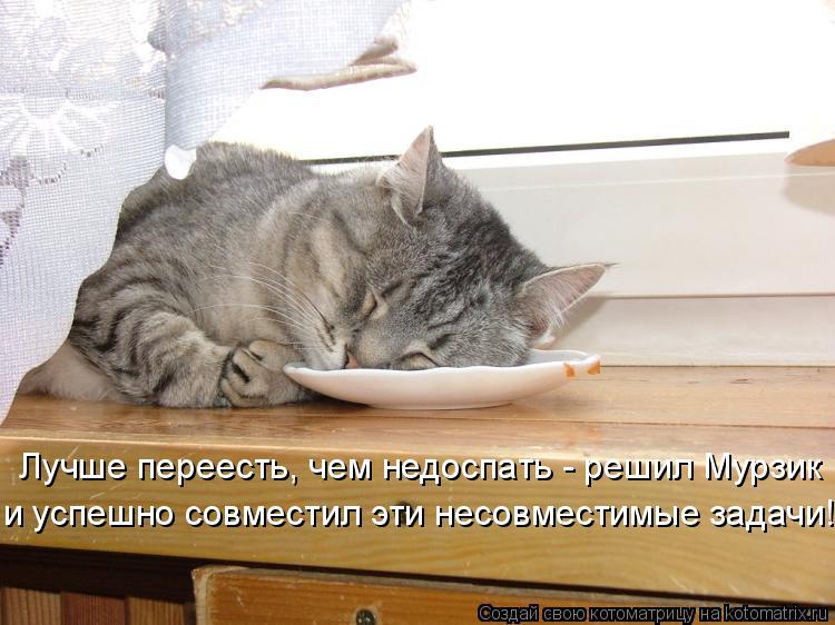 Котоматрица: Лучше переесть, чем недоспать - решил Мурзик  и успешно совместил эти несовместимые задачи!
