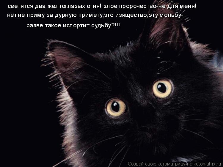 http://kotomatrix.ru/images/lolz/2008/12/22/NYm.jpg
