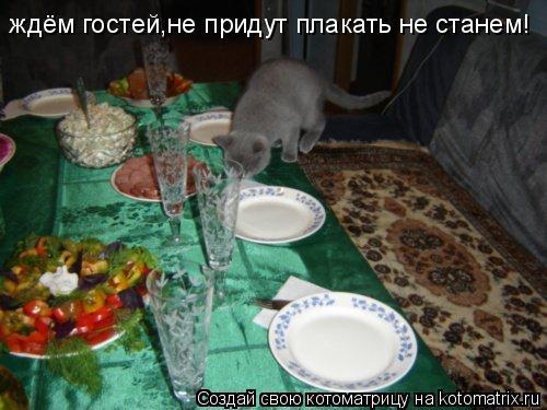 Котоматрица: ждём гостей,не придут плакать не станем!