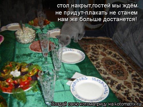 Котоматрица: стол накрыт,гостей мы ждём не придут-плакать не станем нам же больше достанется! .