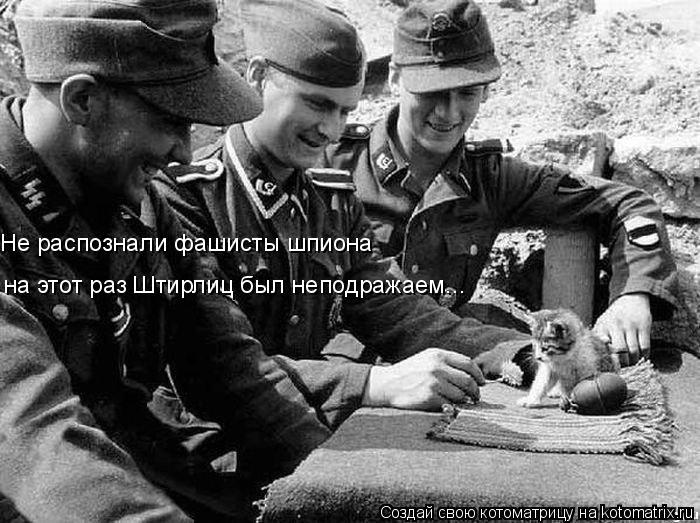 Котоматрица: Не распознали фашисты шпиона на этот раз Штирлиц был неподражаем...