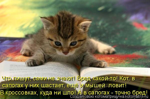 Котоматрица: Что пишут, сами не знают! Бред какой-то! Кот, в сапогах у них шастает, ещё и мышей  ловит! В кроссовках, куда ни шло! А в сапогах - точно бред!