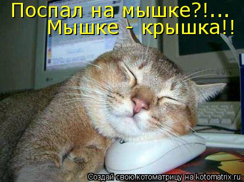 Котоматрица: Поспал на мышке?!... Мышке - крышка!!